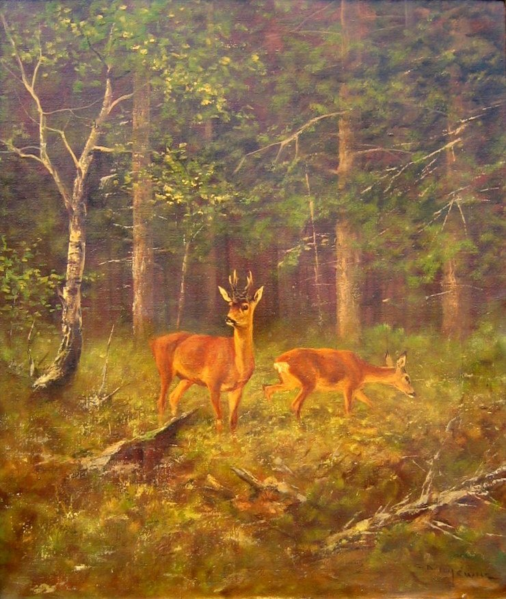 24: Deer in Forest Clearing