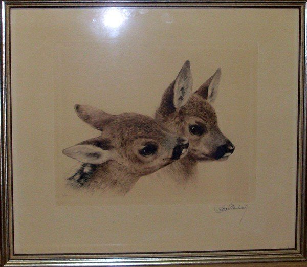 Lithography, fawns, color, re. and not signed, legible,
