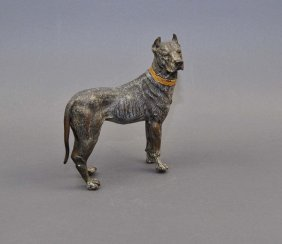 "Rubbed ""Bulldog"", Viennese Bronze, Painted Strongly, Be"