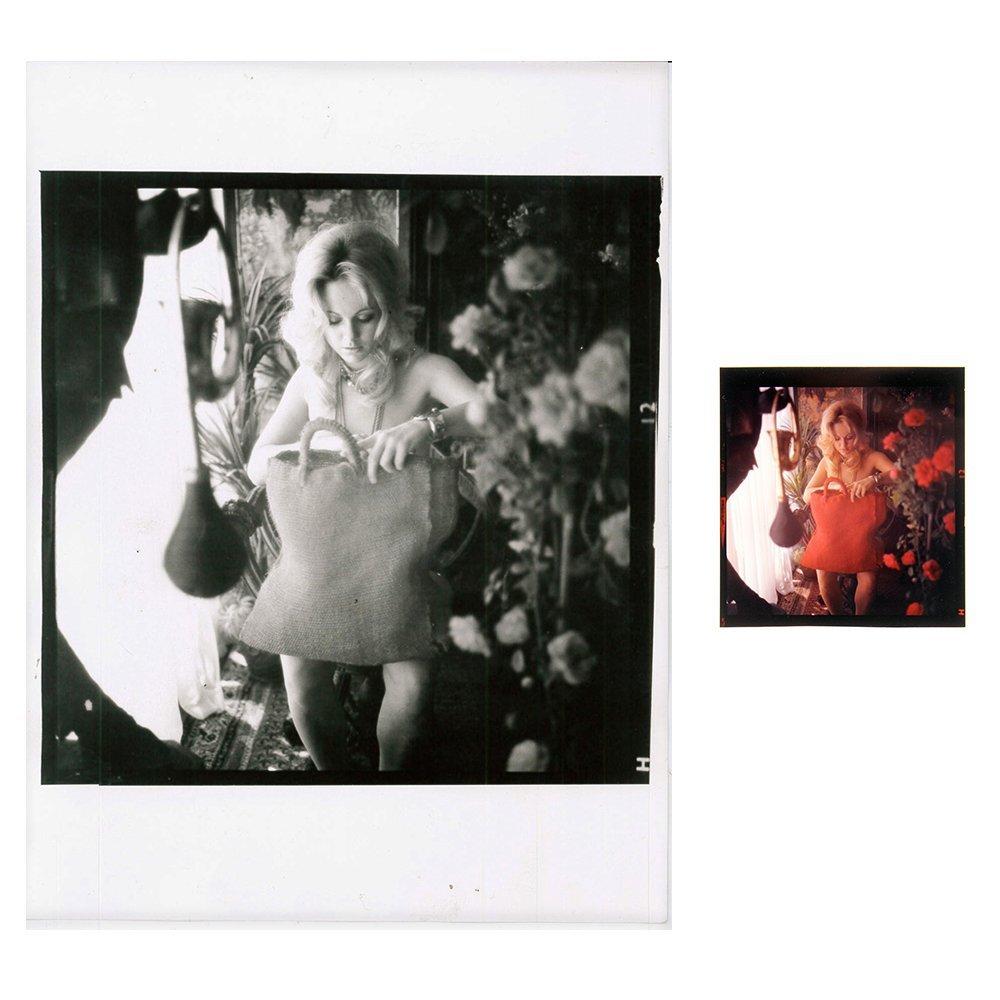 Angela Adams 120mm & 6x8 Print Bob Guccione