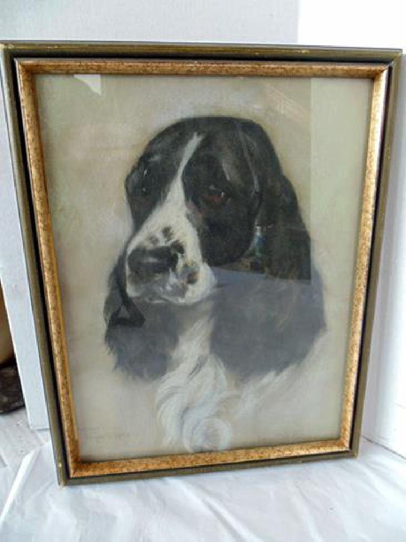 Signed Drawing of a Dog