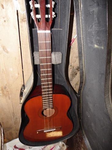 Hondo Guitar in Case