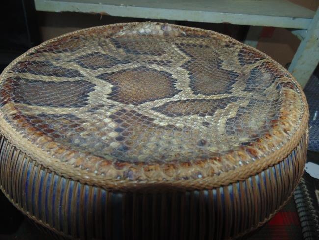 Middle Eastern Snake Skin & Porcealin Drum - 3