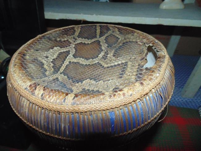 Middle Eastern Snake Skin & Porcealin Drum - 4