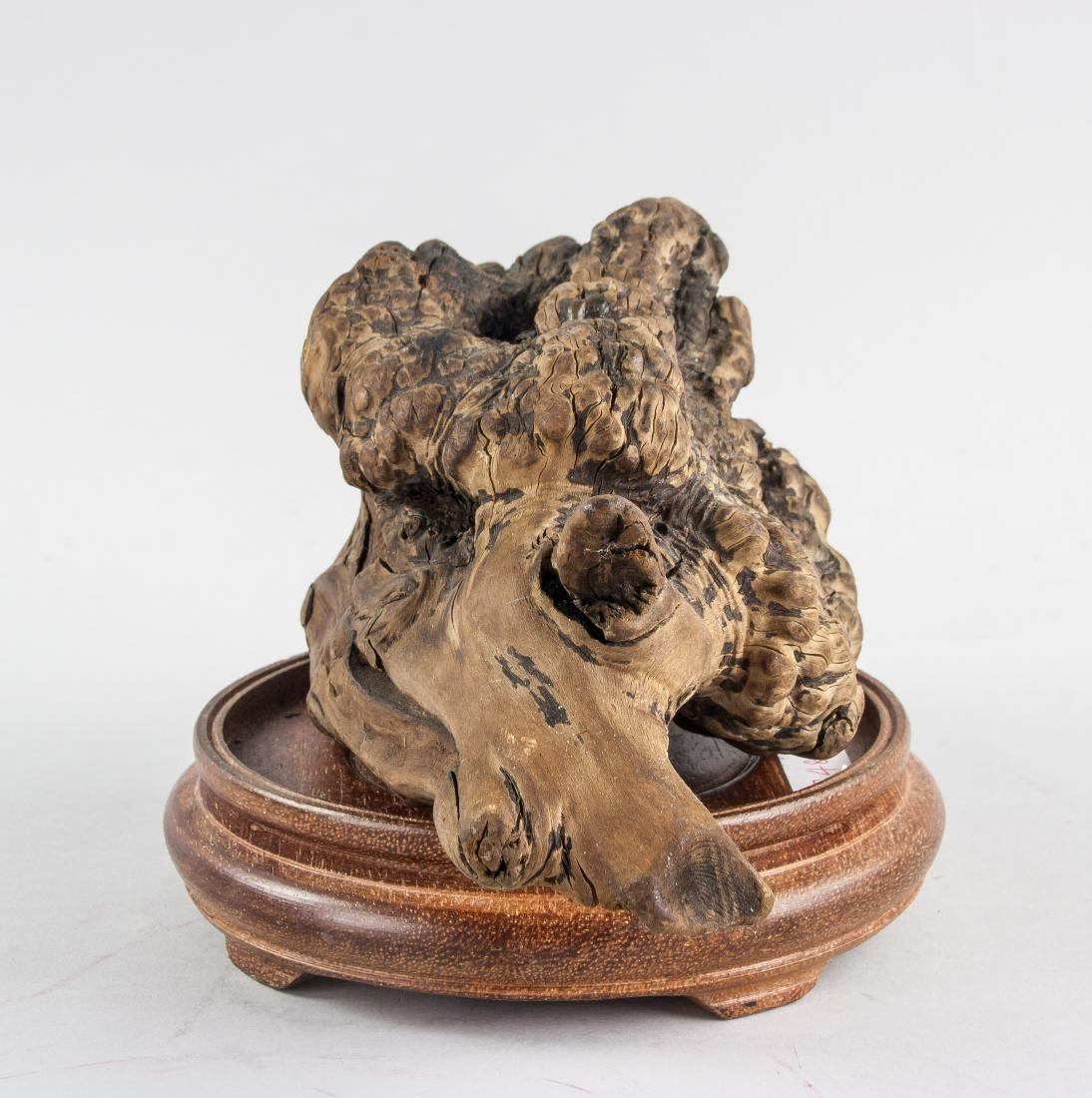 Chinese Fossilized Agarwood Scholar's Stone - 2