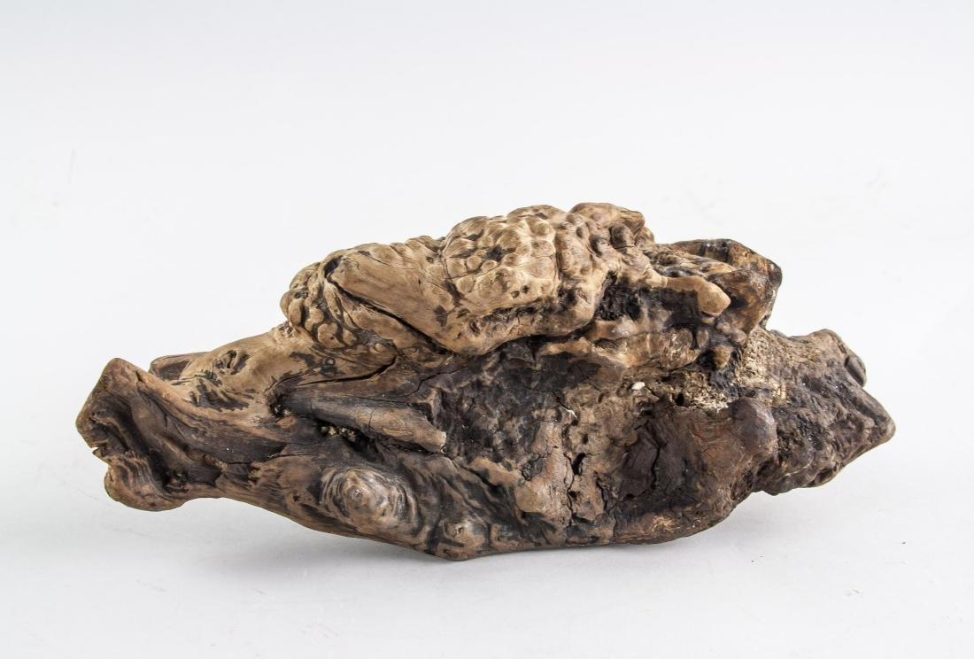 Chinese Fossilized Agarwood Scholar's Stone - 5
