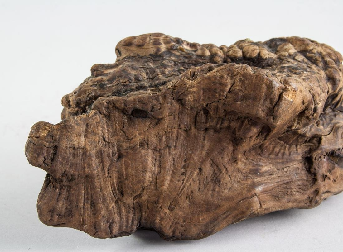Chinese Fossilized Agarwood Scholar's Stone - 8