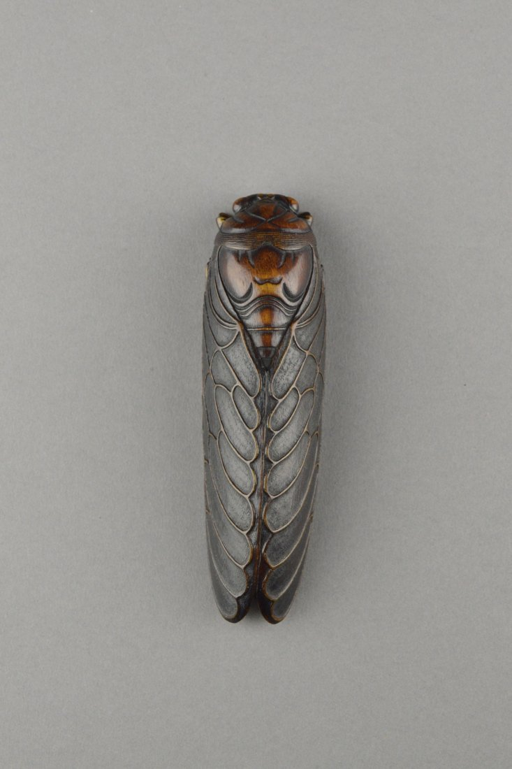 492: Rare Chinese Rhinoceros Horn Carved Cicada