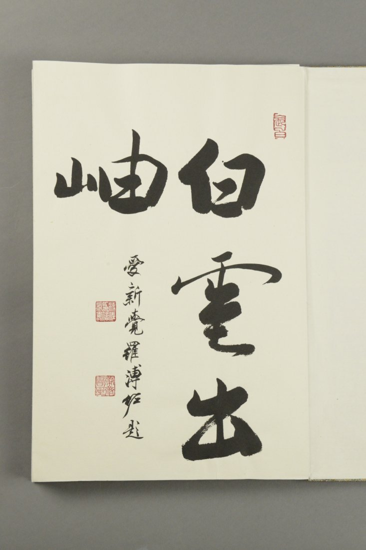 Chinese Watercolour Painting Book Pu Zuo 12 Pages