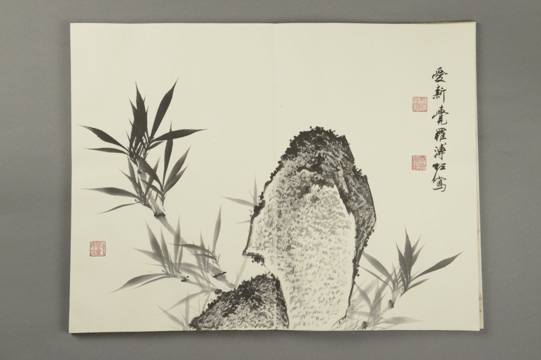 Chinese Watercolour Painting Book Pu Zuo 12 Pages - 5