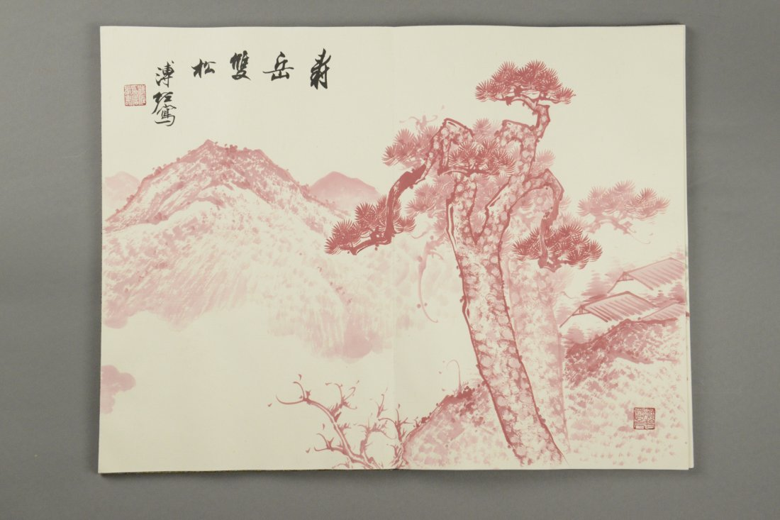 Chinese Watercolour Painting Book Pu Zuo 12 Pages - 8