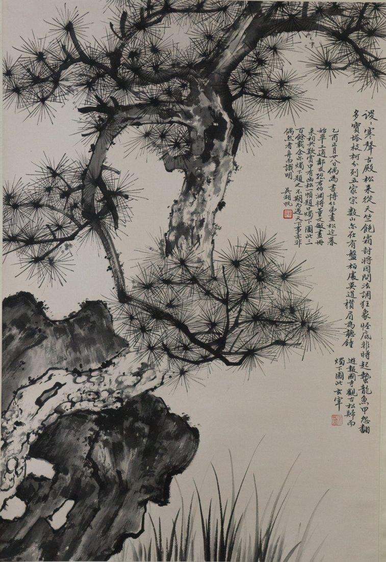 Chinese Pine Tree Pain...