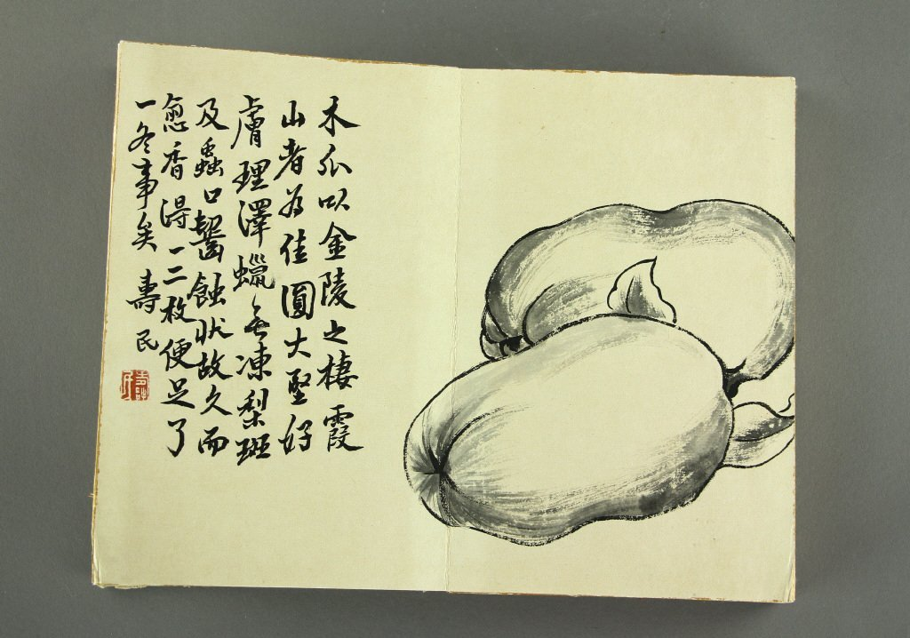 Bian Shoumin 1684-1752 Ink on Paper Booklet