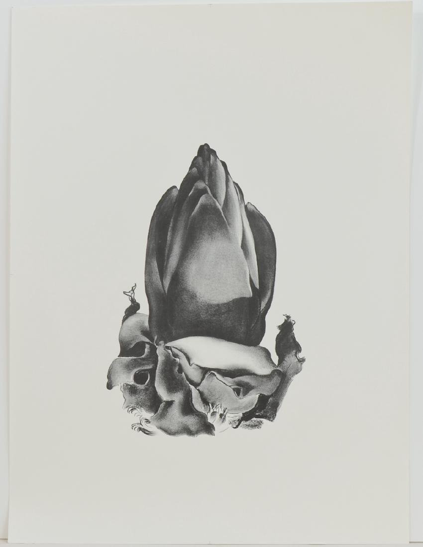 Lithograph from Georgia O'Keeffe Drawings 1968
