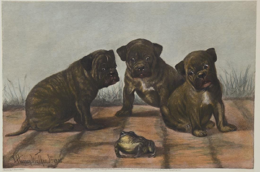 Hansen Walker Bulldog Etching
