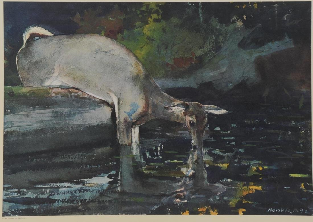 Winslow Homer - Deer Drinking