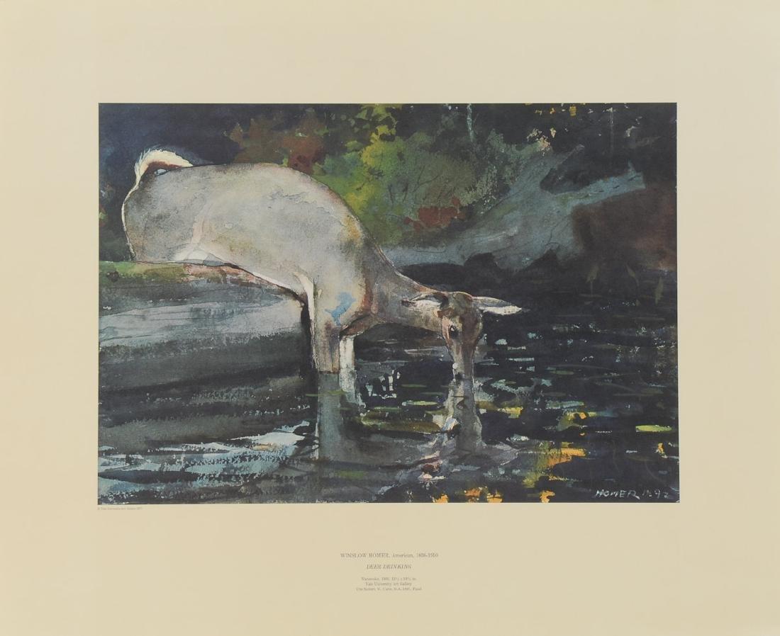 Winslow Homer - Deer Drinking - 2