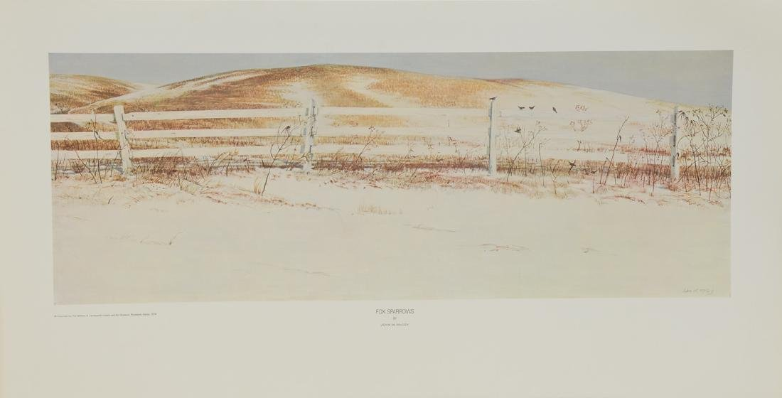 Fox Sparrows John W. McCoy - 2