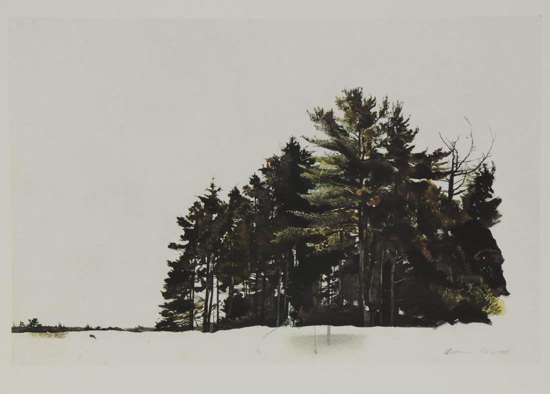 Andrew Wyeth: St. Georges Pines