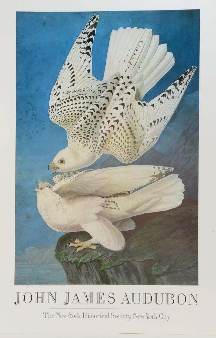 Audubon Exhibition Poster Gryfalcon