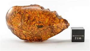 Natural Amber Specimen with Inclusions