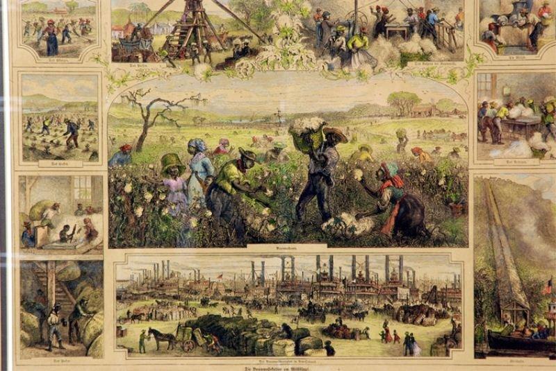 111: German colored Engraving of Slaves Picking Cotton