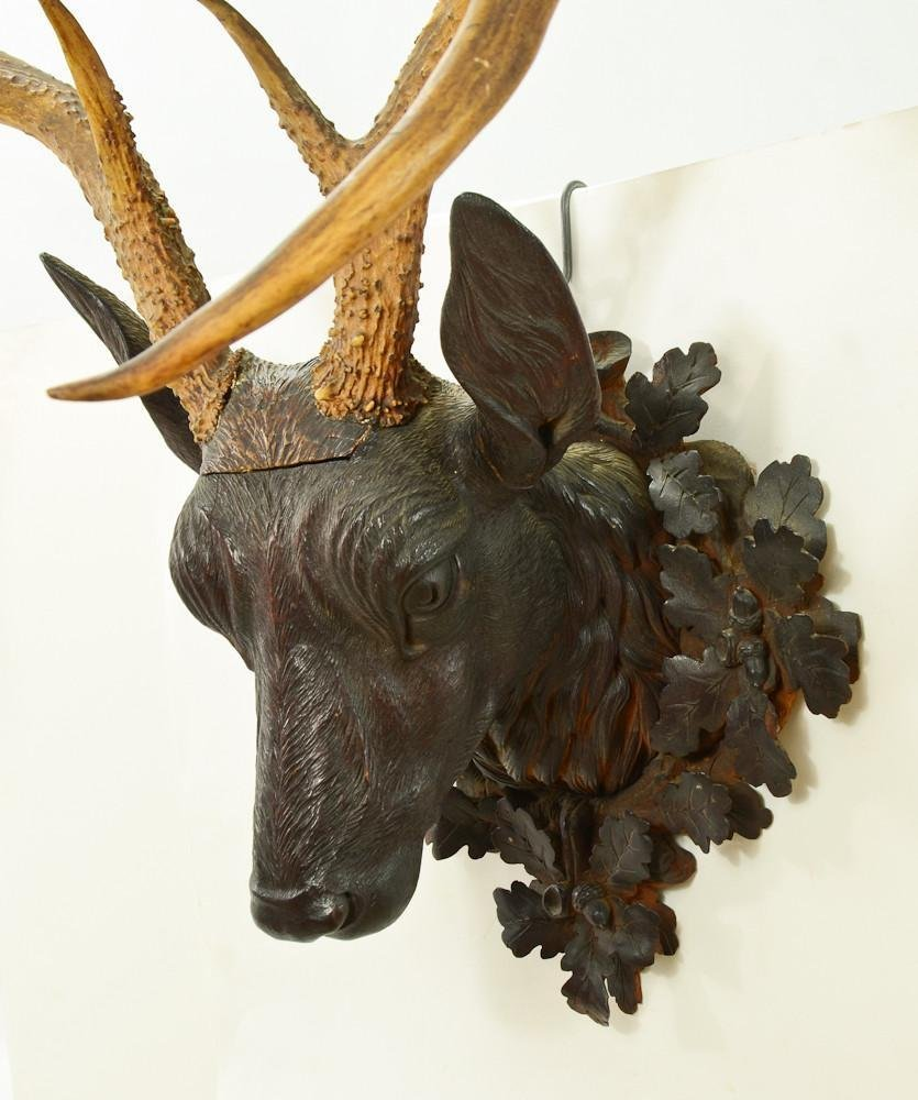 Black Forest Carved Deer Head - 2