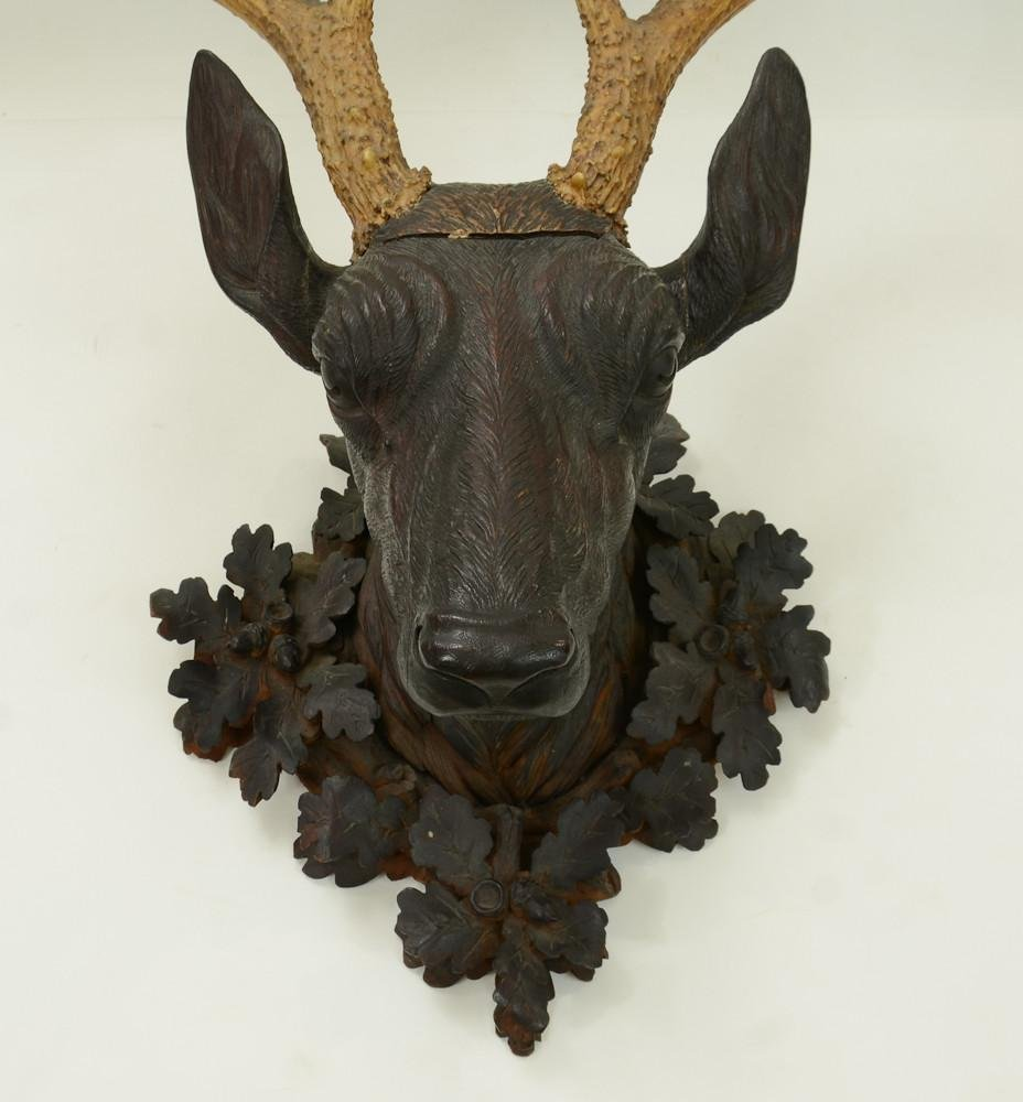 Black Forest Carved Deer Head - 3