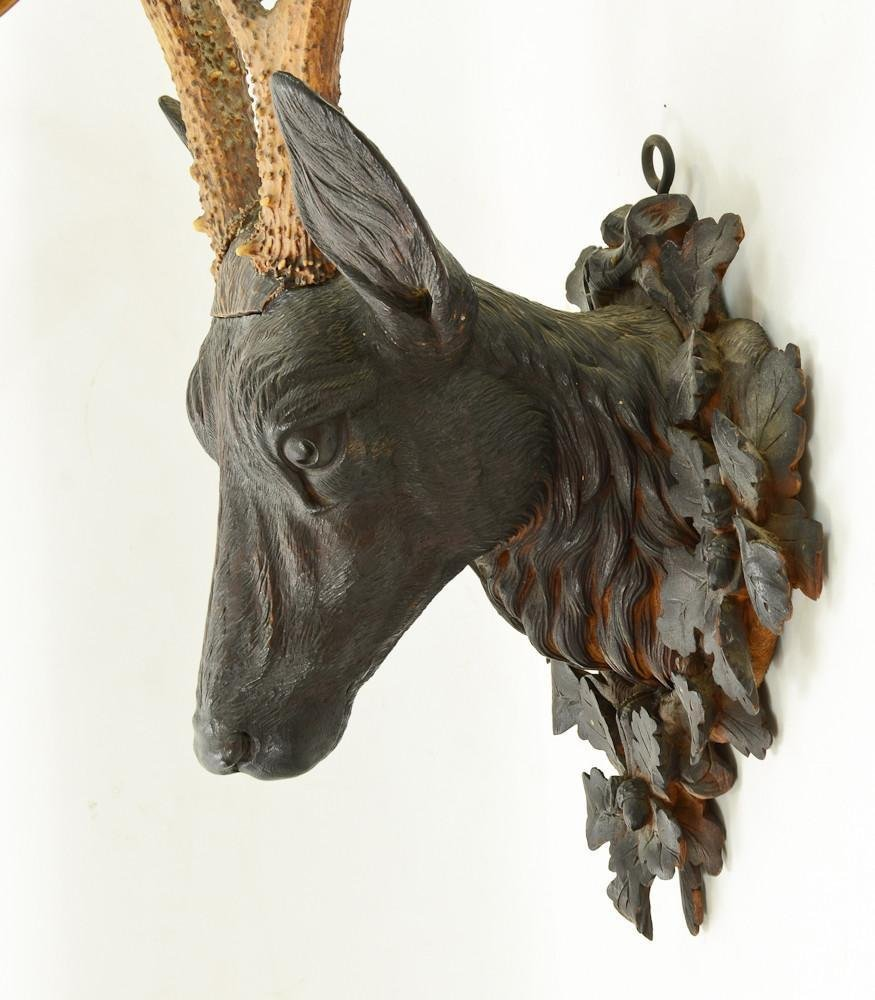 Black Forest Carved Deer Head - 5
