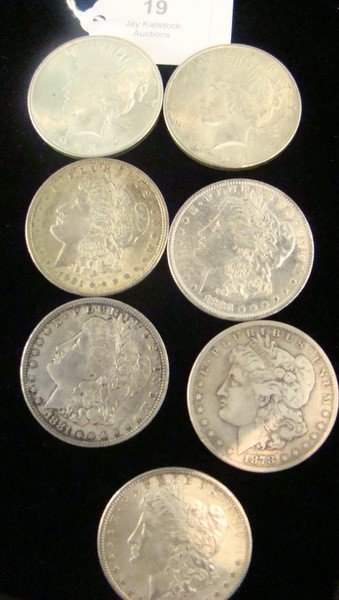 19: LOT OF(7)  5 MORGAN & 2 PEACE SILVER DOLLARS