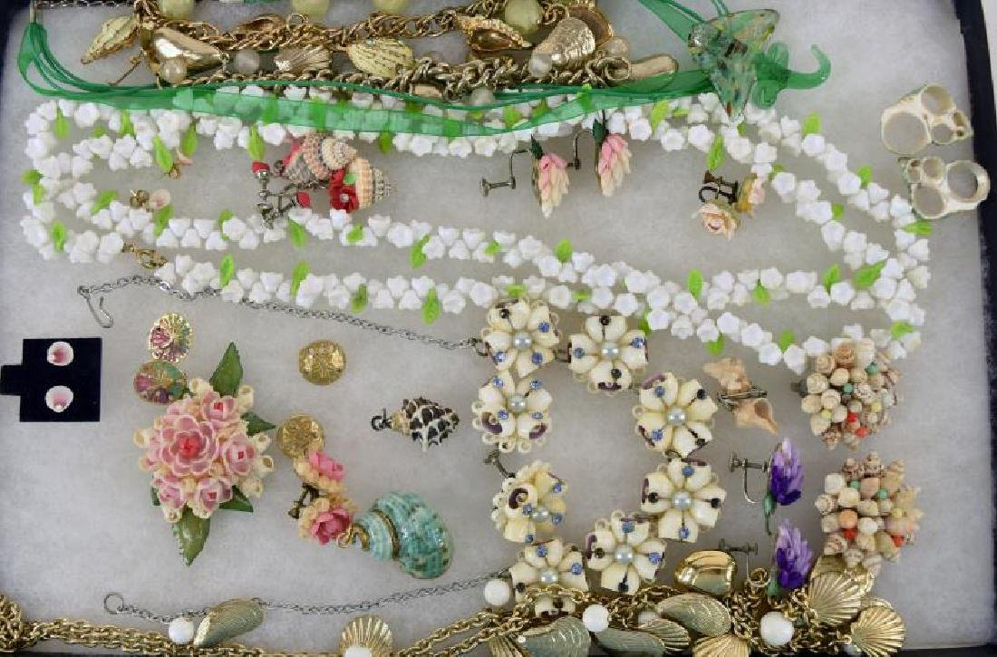 Collection Of Sea Shells And Shell Jewelry