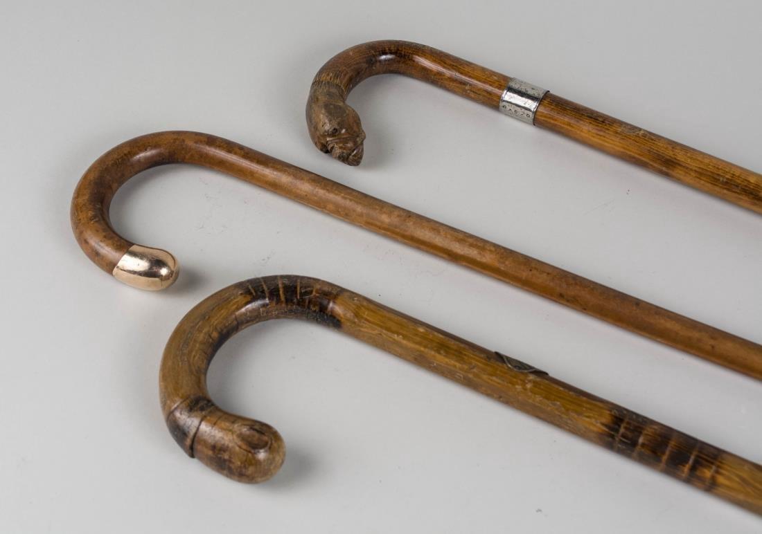 Three Walking Sticks