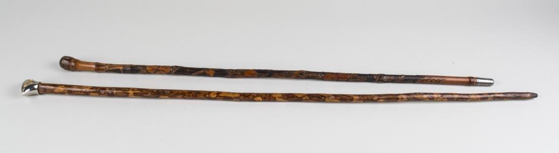Two Exotic Wood Walking Sticks - 2