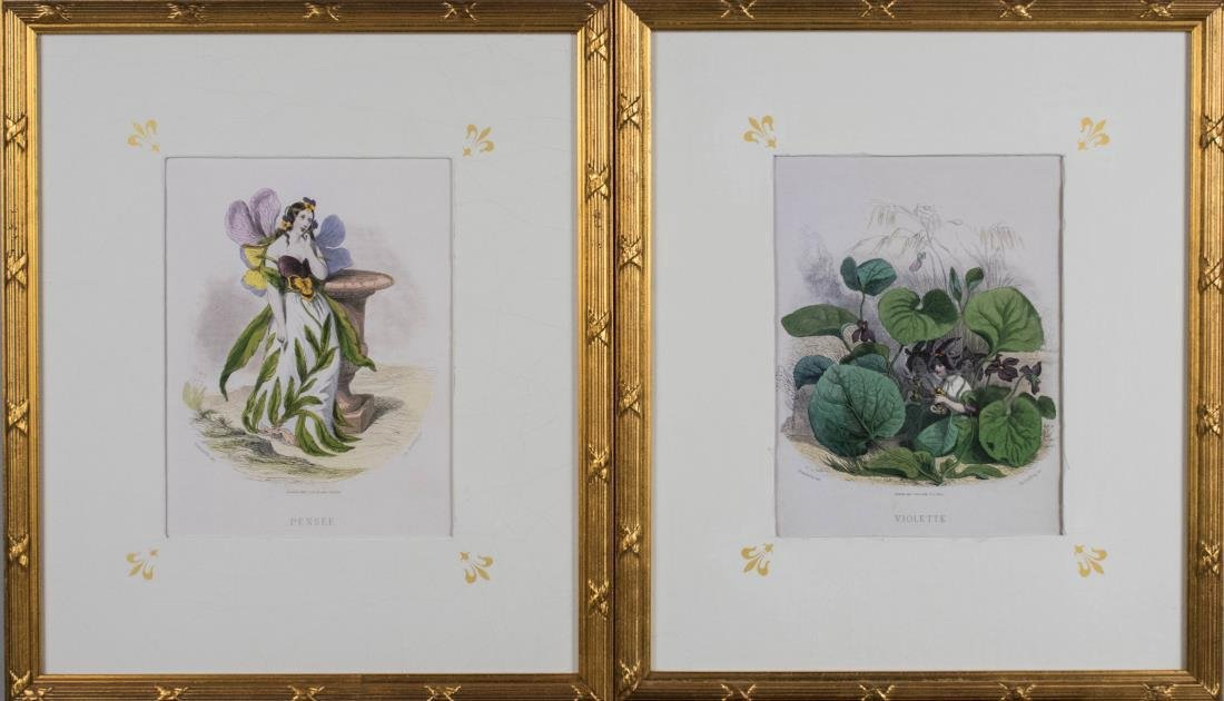 Two Antique Style Fairy Botanical Prints