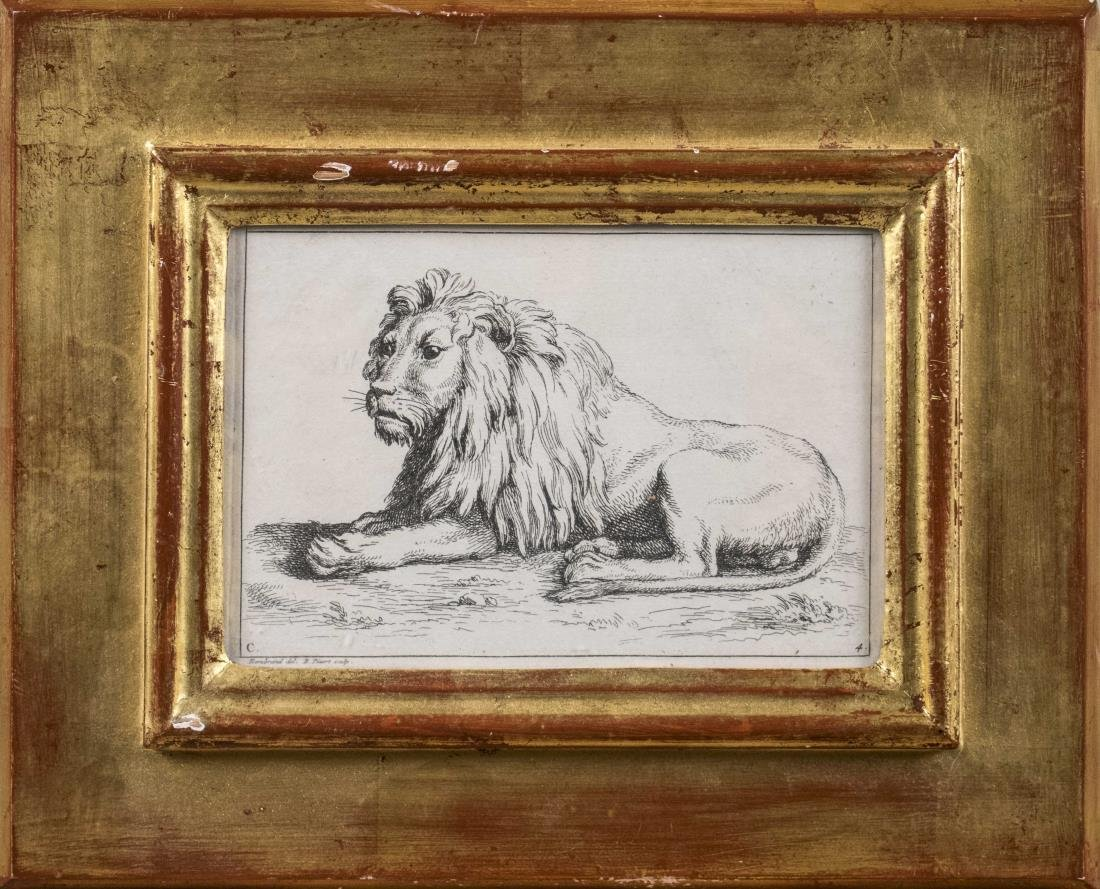 Picart, Lions After Rembrandt (18th Century)
