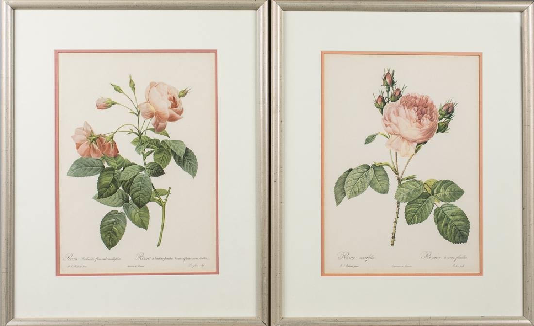 Pair of  Botanical Prints of Roses