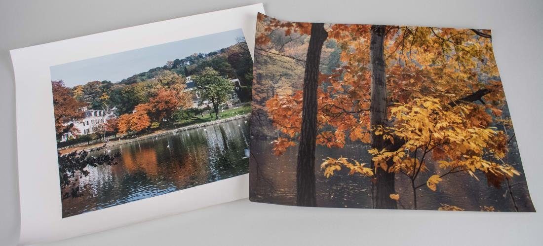 Two Photos of Fall Landscapes (20th Century)
