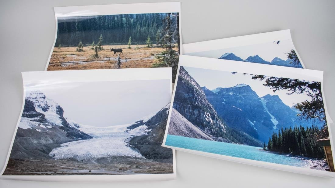 Four Photos of Nature Landscapes (20th Century)