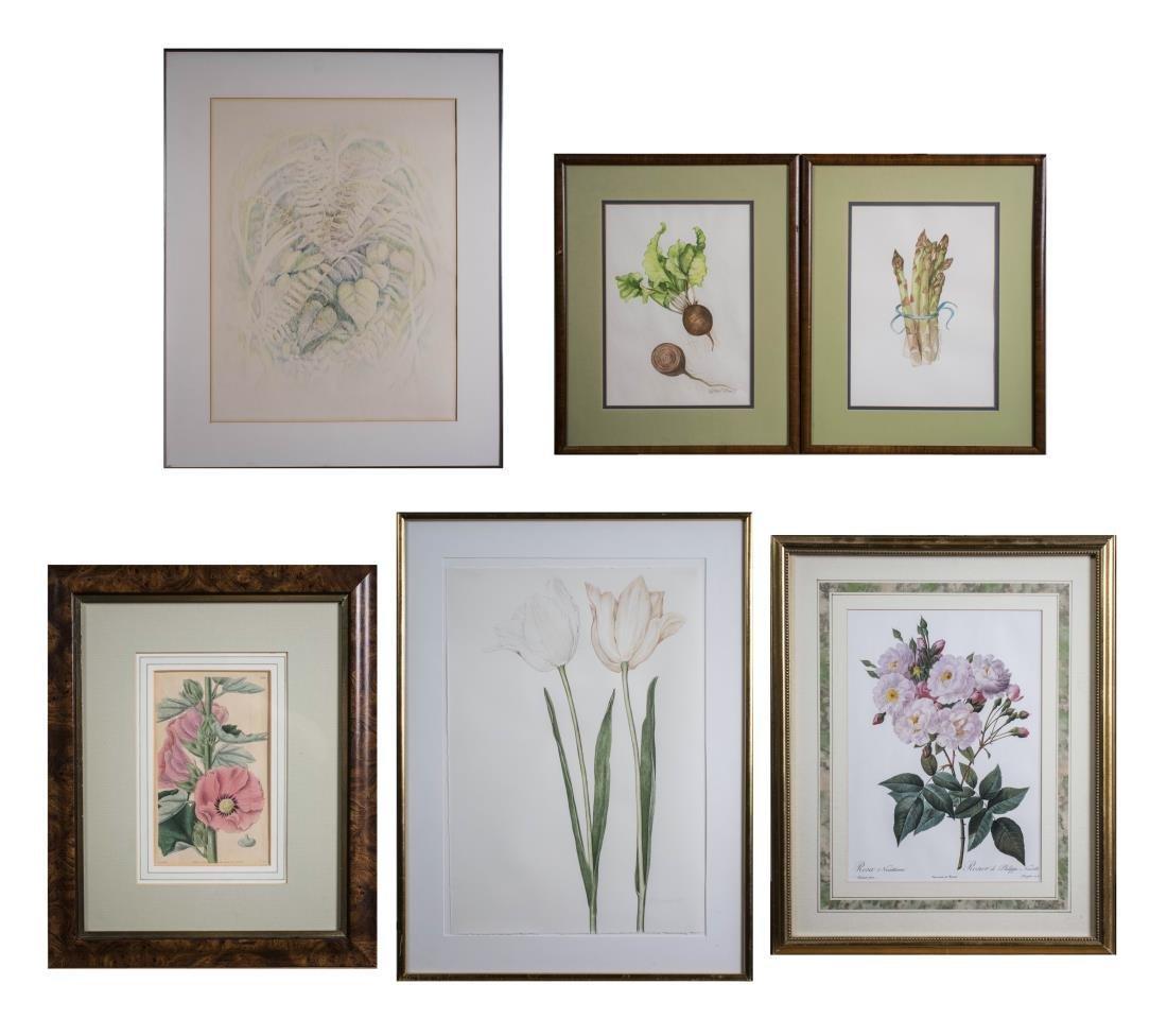 Group of Floral & Botanical Still Life Prints