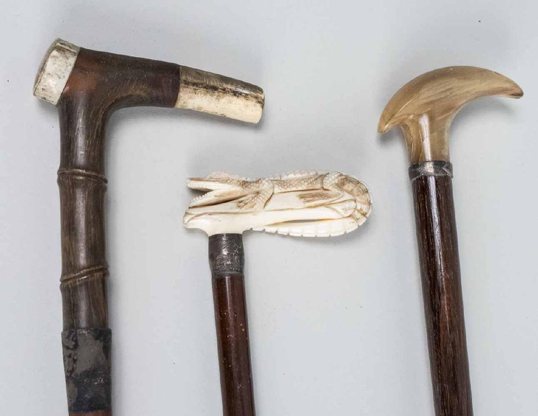 Three Canes / Walking Sticks - 2