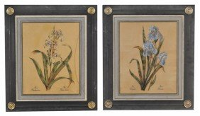 1: Two Pairs of Flower Prints