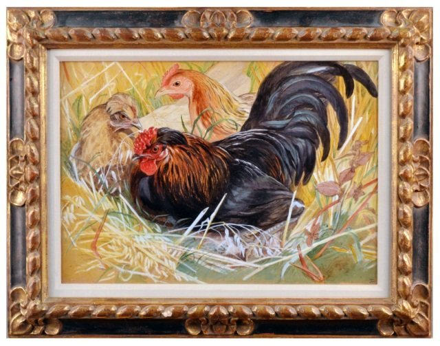 10: Continental School  Roosters