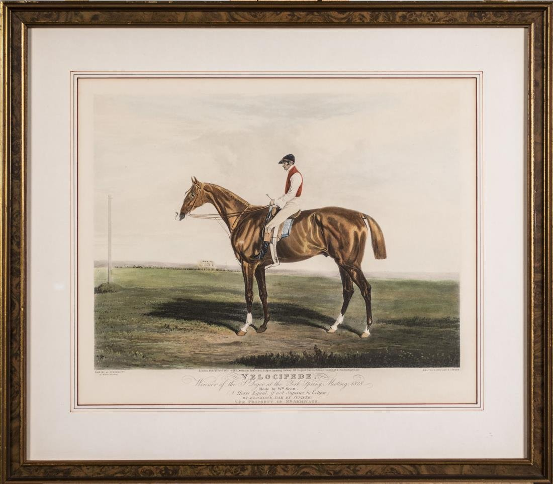Pair of Equestrian Prints - 2