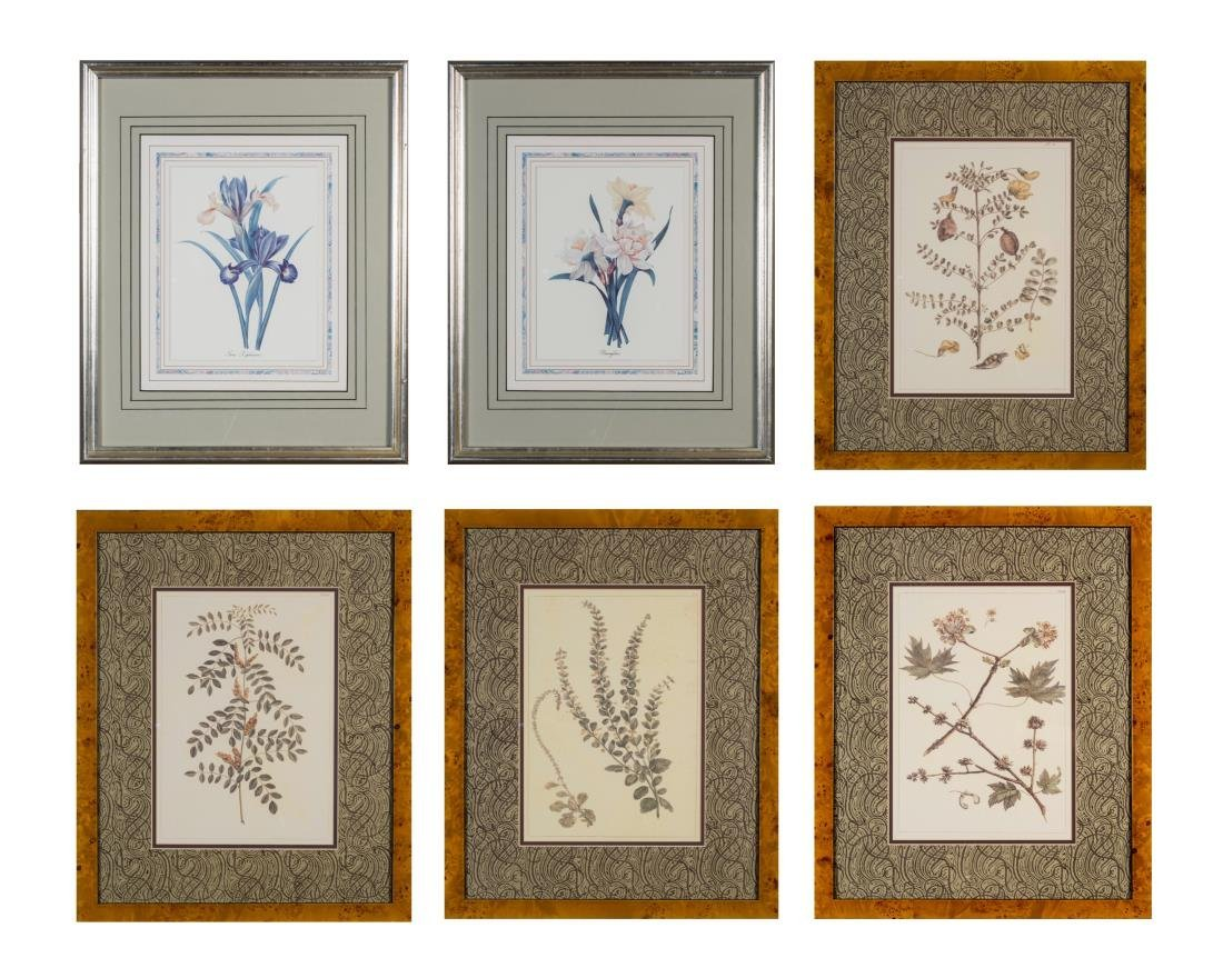 Group of Six Decorative Floral Prints