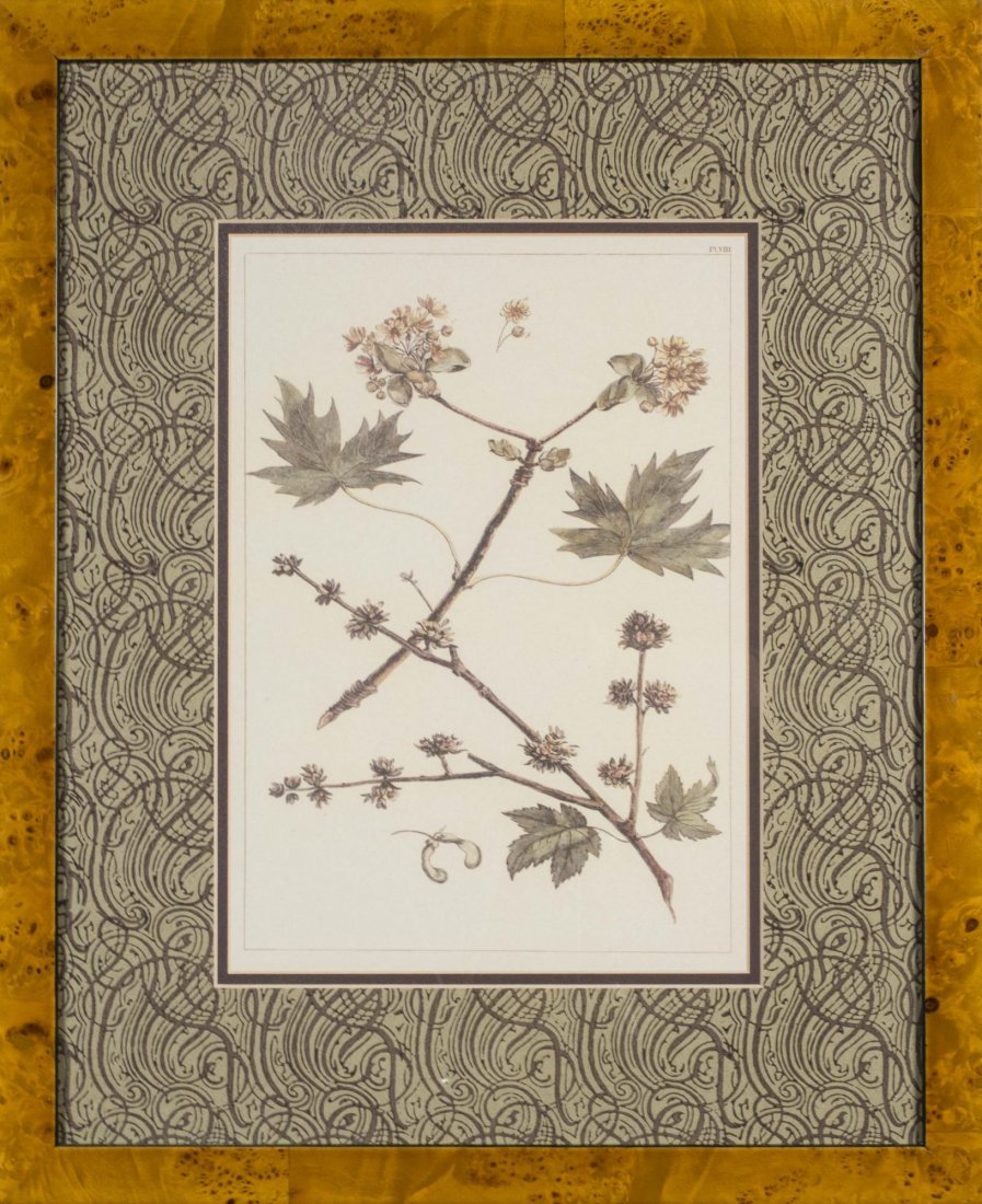 Group of Six Decorative Floral Prints - 2