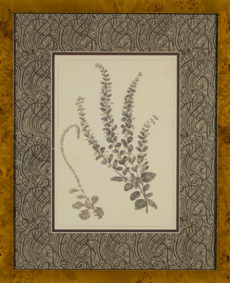 Group of Six Decorative Floral Prints - 3