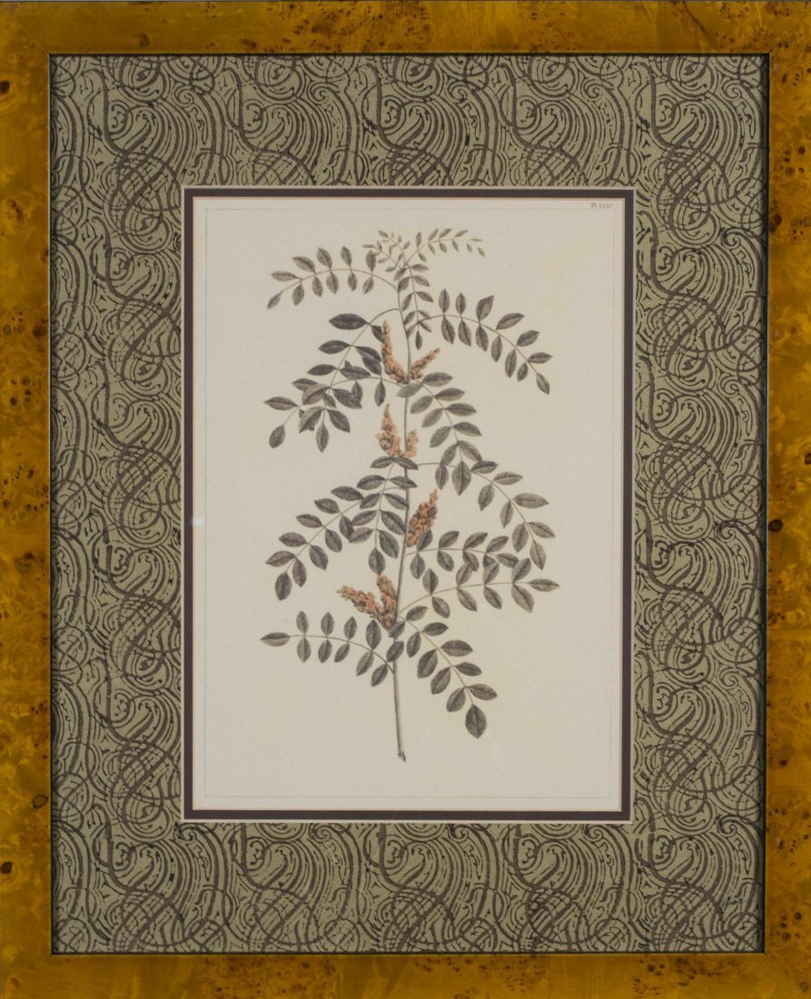 Group of Six Decorative Floral Prints - 4