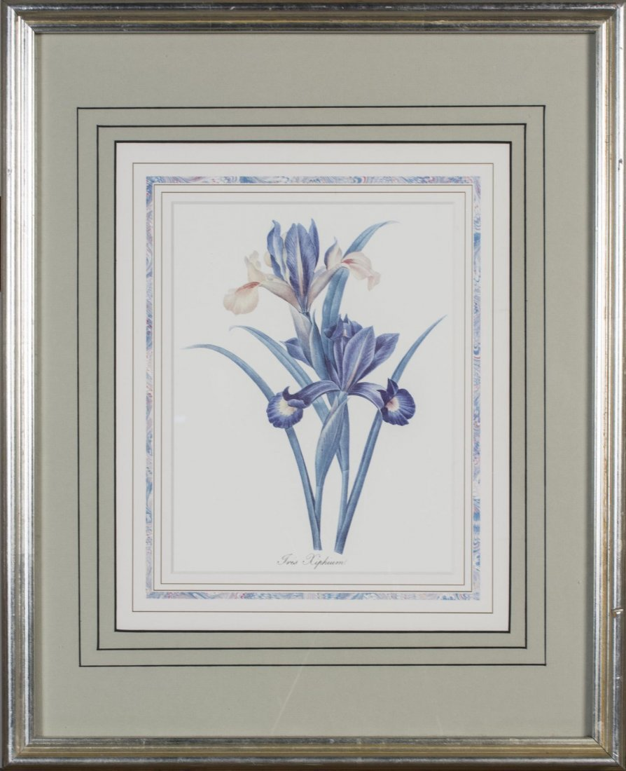 Group of Six Decorative Floral Prints - 6