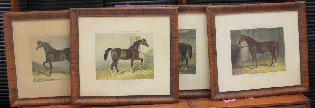 SET OF (4) HORSE PRINTS