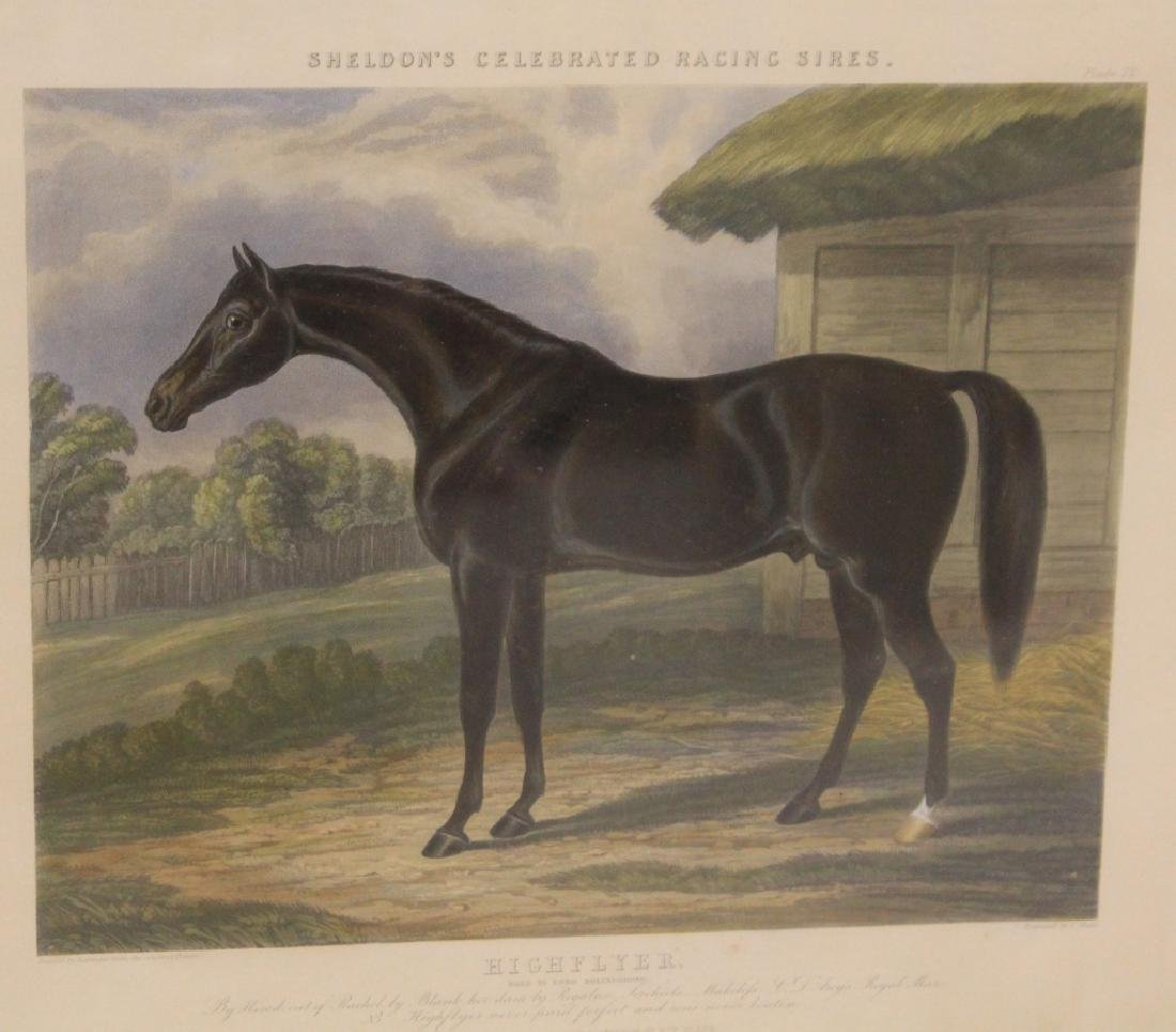SET OF (4) HORSE PRINTS - 5